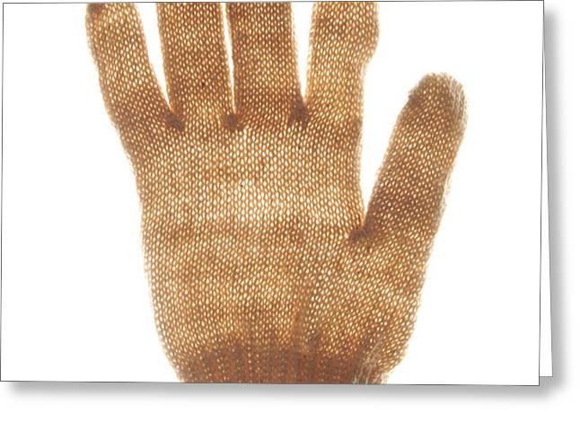Woolen glove Greeting Card by BERNARD JAUBERT