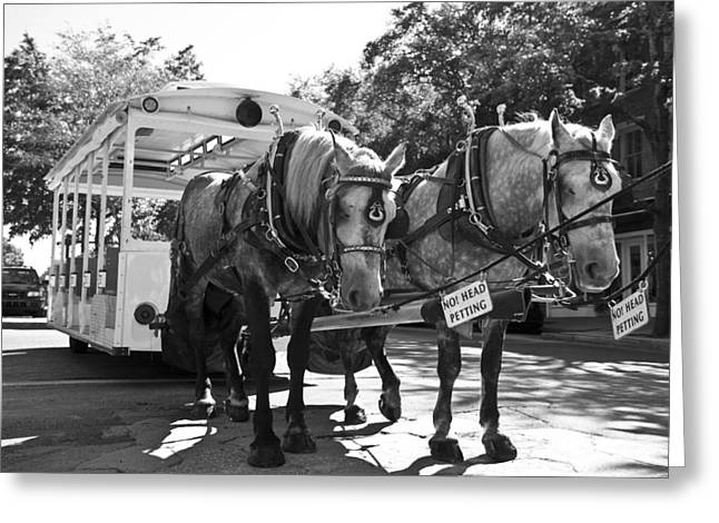Horse Driven Wagon Greeting Cards - Work Greeting Card by Betsy C  Knapp