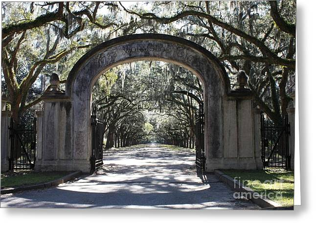 Live Art Photographs Greeting Cards - Wormsloe Plantation Gate Greeting Card by Carol Groenen