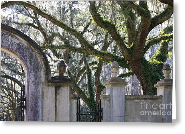 The South Photographs Greeting Cards - Wormsloe Welcome Greeting Card by Carol Groenen