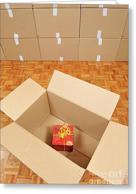Cardboard Greeting Cards - Wrapped gift box inside cardboard box Greeting Card by Sami Sarkis