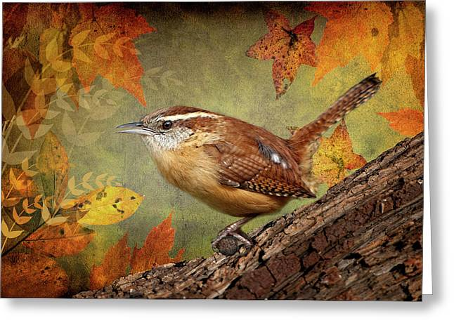Wren Greeting Cards - Wren in Autumn  Greeting Card by Bonnie Barry