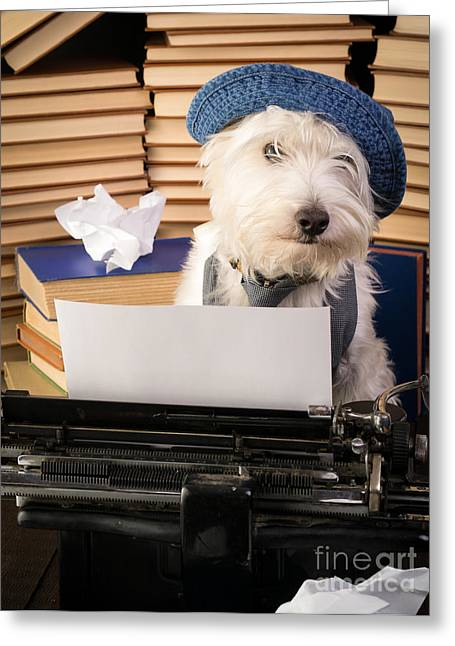 Westie Puppies Greeting Cards - Writers Block Greeting Card by Edward Fielding