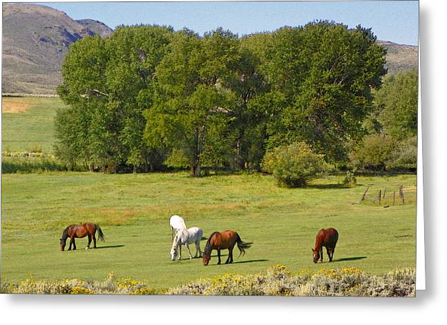 Wyoming Landscape With Horses Greeting Card by Lenore Senior and Dawn Senior-Trask