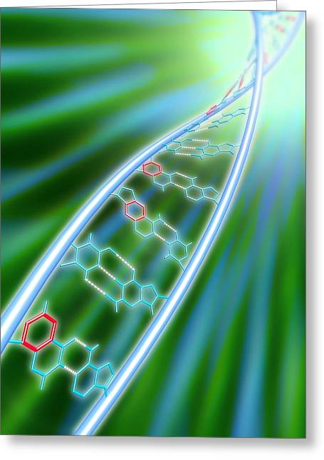 Artificial Life Greeting Cards - Xdna Molecule Greeting Card by Pasieka