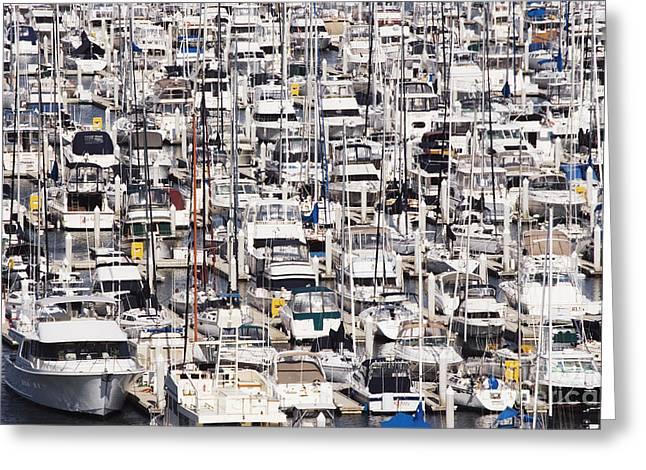 Yacht Marina Greeting Card by Jeremy Woodhouse