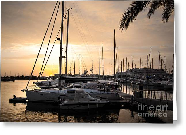 Yellow Sailboats Photographs Greeting Cards - Yachts at Sunset Greeting Card by Carlos Caetano
