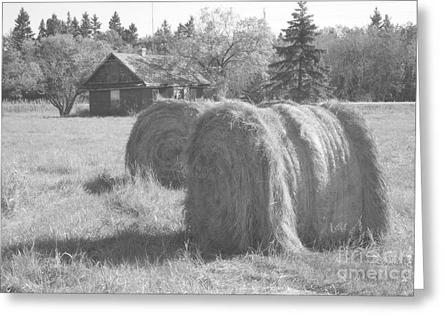 Hay Bales Greeting Cards - Ye Olde Farm House Greeting Card by Mary Mikawoz