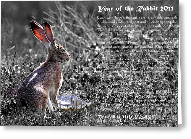 New Year Greeting Cards - Year of the Rabbit 2011 . BW Greeting Card by Wingsdomain Art and Photography