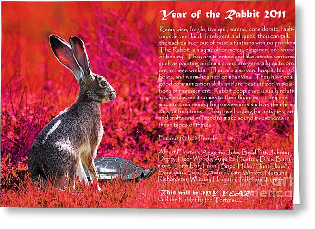 New Year Greeting Cards - Year of the Rabbit 2011 . Red Greeting Card by Wingsdomain Art and Photography