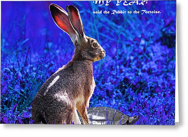Nursery Rhyme Digital Art Greeting Cards - Year of the Rabbit 2011 . Square Blue Greeting Card by Wingsdomain Art and Photography