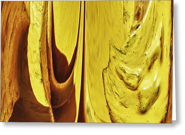 Irregular Forms Greeting Cards - Yellow 2 Greeting Card by Skip Nall