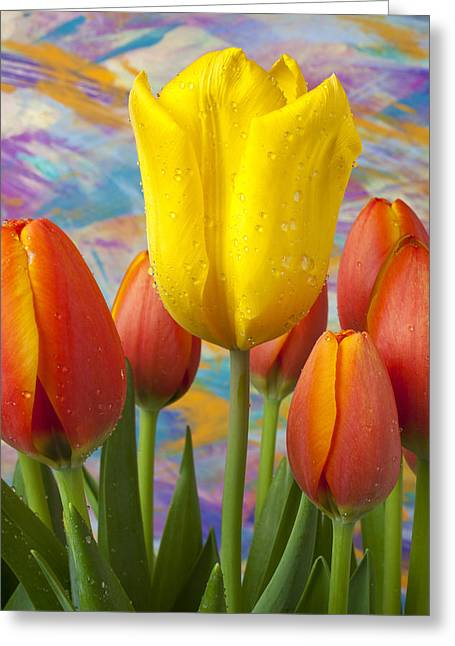 Dew Greeting Cards - Yellow and Orange Tulips Greeting Card by Garry Gay