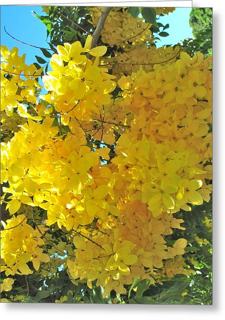 Fistula Greeting Cards - Yellow Blossom Greeting Card by Irina Zilbermanas