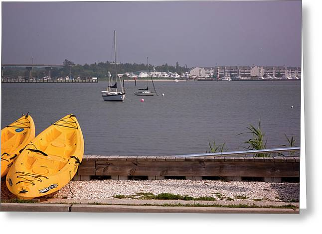 The Nature Center Greeting Cards - Yellow Boats in Cape May Greeting Card by Tom Singleton