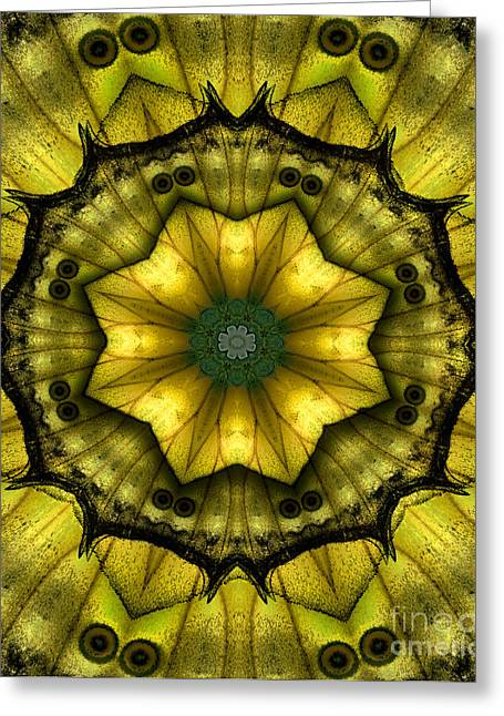 Yellow Butterfly Wing Kaleidoscope Mandala Greeting Card by Janeen Wassink Searles