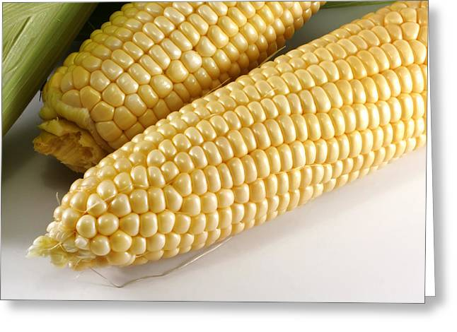 Husks Greeting Cards - Yellow corn Greeting Card by Blink Images