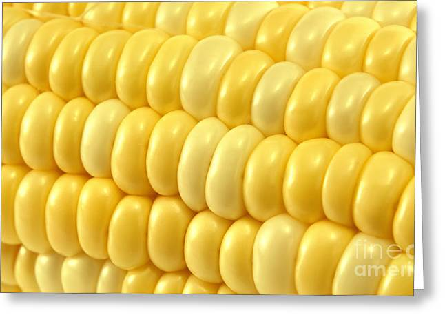 Corn Kernel Greeting Cards - Yellow corn macro Greeting Card by Blink Images