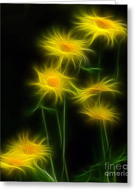 Daisies Mixed Media Greeting Cards - Yellow Daisy Floral  Greeting Card by Marjorie Imbeau