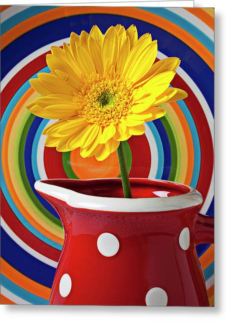Pitcher Greeting Cards - Yellow daisy in red pitcher Greeting Card by Garry Gay