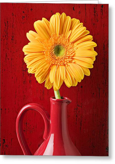 Daisy Greeting Cards - Yellow daisy in red vase Greeting Card by Garry Gay