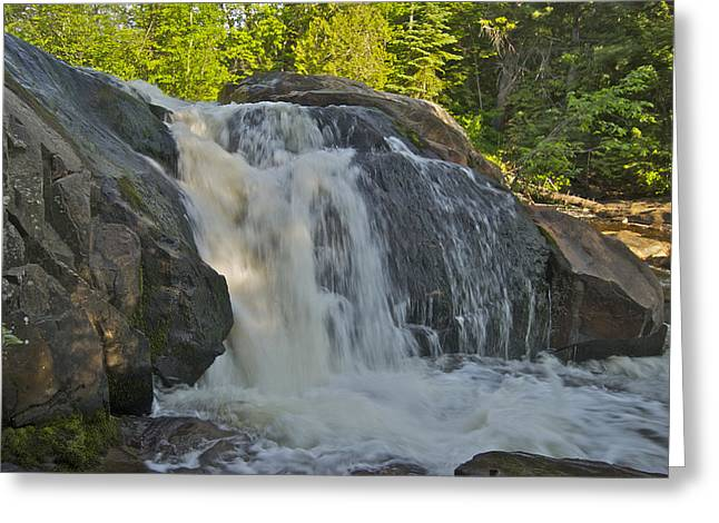 Yellow Dog Greeting Cards - Yellow Dog Falls 4192 Greeting Card by Michael Peychich