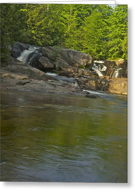 Yellow Dog Greeting Cards - Yellow Dog Falls 4232 Greeting Card by Michael Peychich