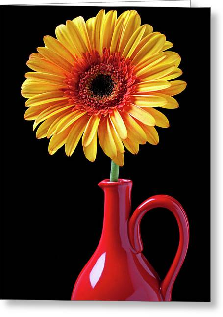 Mum Greeting Cards - Yellow fancy daisy in red vase Greeting Card by Garry Gay