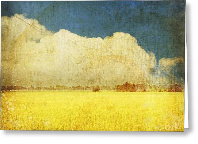 Grungy Greeting Cards - Yellow field Greeting Card by Setsiri Silapasuwanchai
