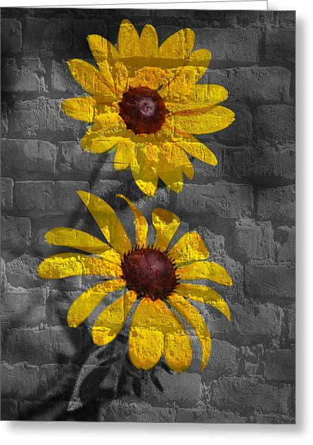 Grafitti Mixed Media Greeting Cards - Yellow flower grafitti Greeting Card by Living Waters Photography