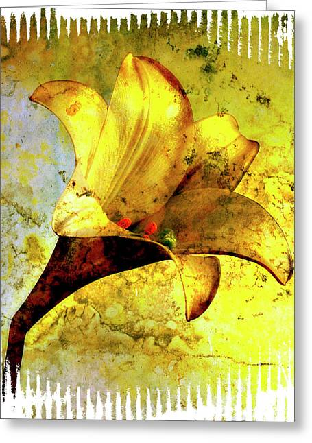 Lilium Greeting Cards - Yellow lily Greeting Card by Bernard Jaubert
