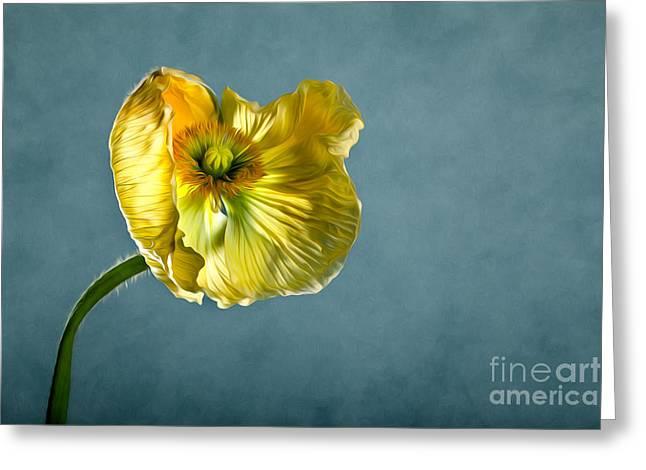 Blossoms Mixed Media Greeting Cards - Yellow Poppy Greeting Card by Nailia Schwarz