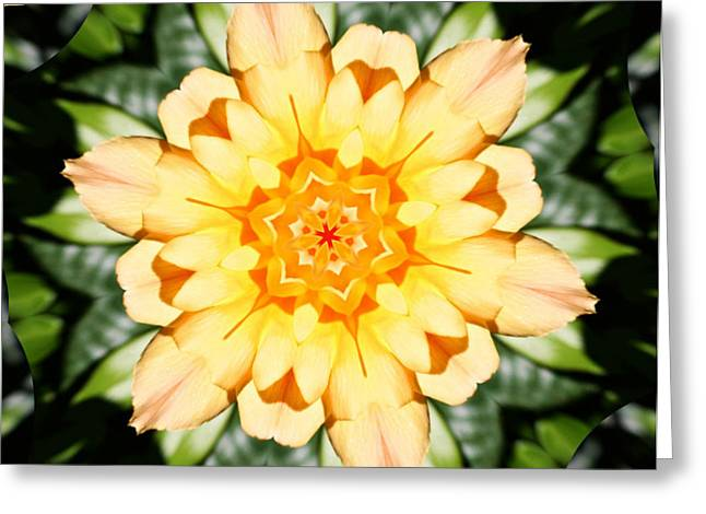 Floral Digital Art Digital Art Greeting Cards - Yellow Rose Kaleidoscope  Greeting Card by Cathie Tyler
