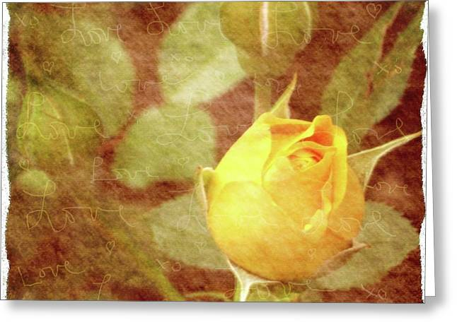 Pictures Of Oregon Greeting Cards - Yellow Rose of Love Greeting Card by Cathie Tyler