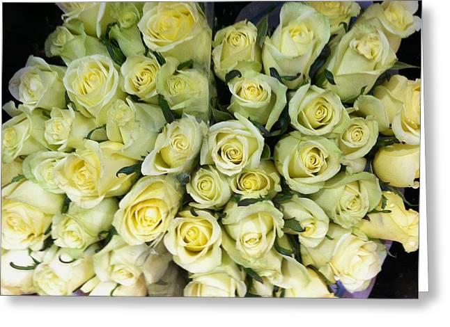 Yellow Roses Greeting Card by Anna Villarreal Garbis