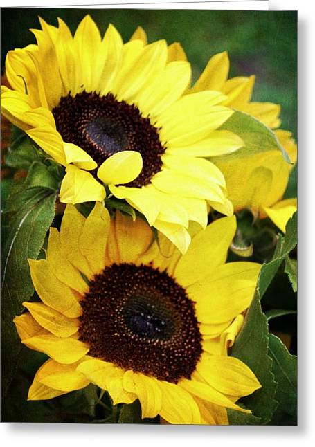 Yellow Sunflower Digital Greeting Cards - Yellow Sunflowers Greeting Card by Cathie Tyler