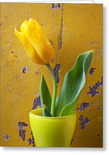 Yellow Leaves Greeting Cards - Yellow tulip in yellow vase Greeting Card by Garry Gay