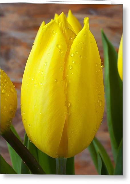Yellow Leaves Greeting Cards - Yellow tulip with dew Greeting Card by Garry Gay