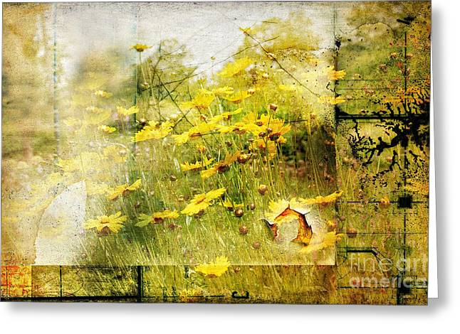 Yellow Wildflower Field Abstract Greeting Card by Elaine Manley