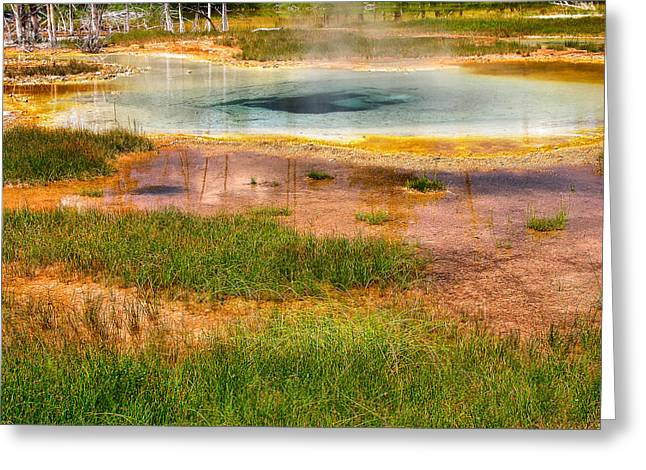 Landscape Photograpy Greeting Cards - Yellowstone Geyser Greeting Card by Steven Ainsworth