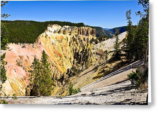 Yellowstone National Park Greeting Cards - Yellowstone Grand Canyon South Rim View Greeting Card by Greg Norrell
