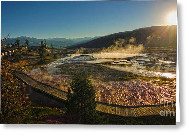Yellowstone National Park - Minerva Terrace - 05 Greeting Card by Gregory Dyer
