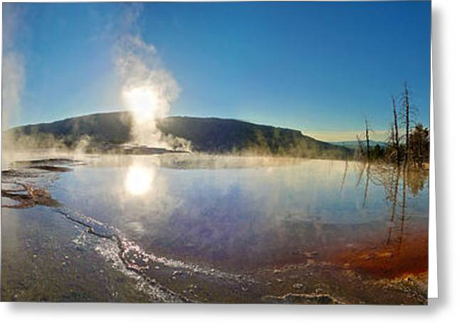Yellowstone National Park - Minerva Terrace - Panorama Greeting Card by Gregory Dyer