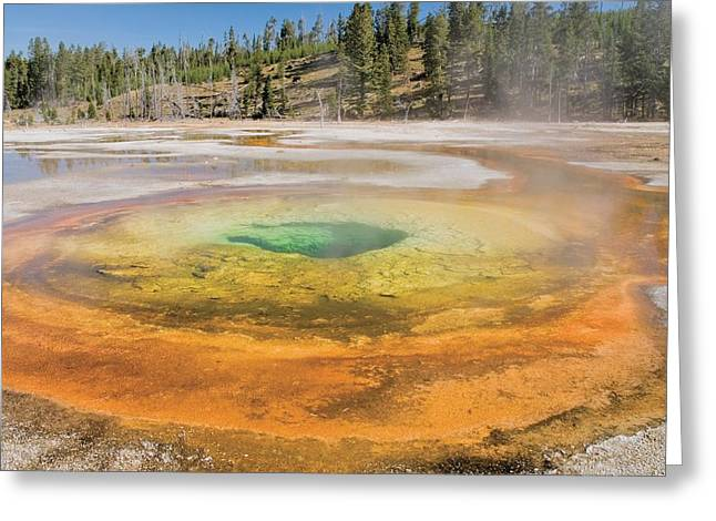 Chromatic Greeting Cards - Yellowstone National Park, United Greeting Card by Philippe Widling