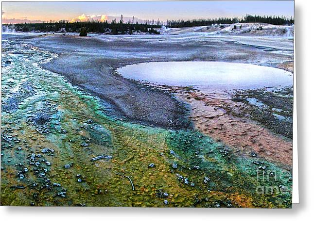 Yellowstone Norris Geyser Basin At Sunset - 04 Greeting Card by Gregory Dyer
