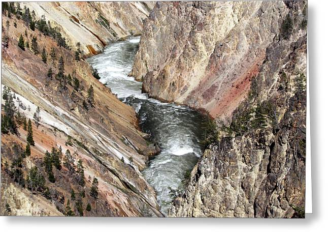 Yellowstone River Greeting Cards - Yellowstone River Greeting Card by Angie Vogel