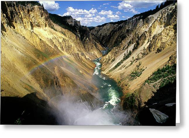 Color_image Greeting Cards - Yellowstone River over the Falls Greeting Card by John Brink