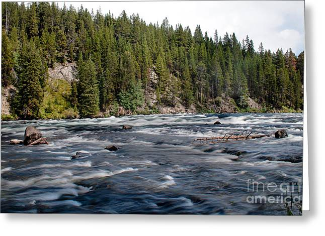 Missouri River Greeting Cards - Yellowstone River Greeting Card by Robert Bales