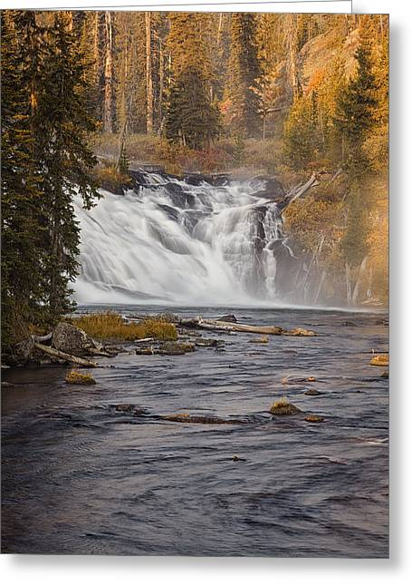 Whitewater Greeting Cards - Yellowstone Waterfall at Autumn Greeting Card by Andrew Soundarajan