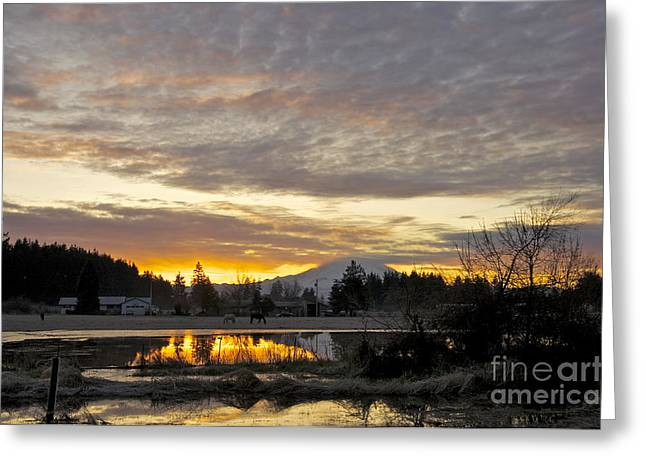Sean Horse Greeting Cards - Yelm Dawn Greeting Card by Sean Griffin